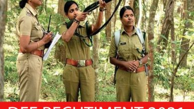 Photo of DFE Recruitment 2021 Assistant Instructor, Sports Officer, Accountan Posts – Apply Online