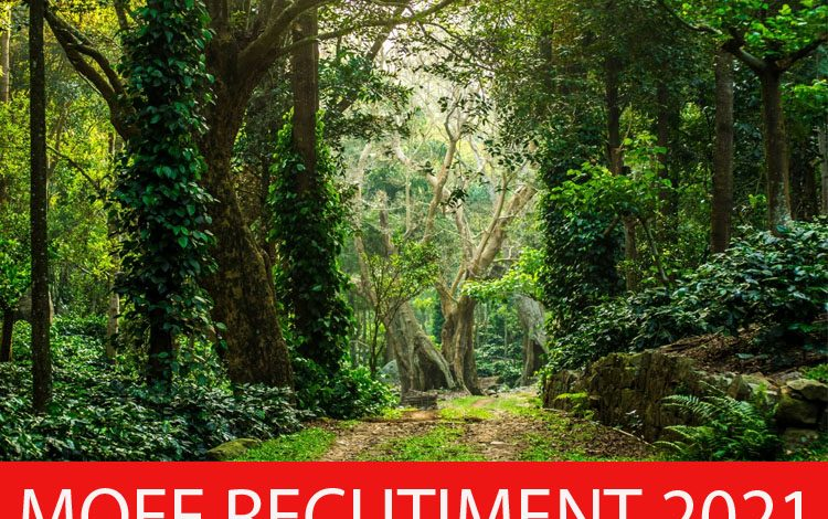 MOEF Recruitment
