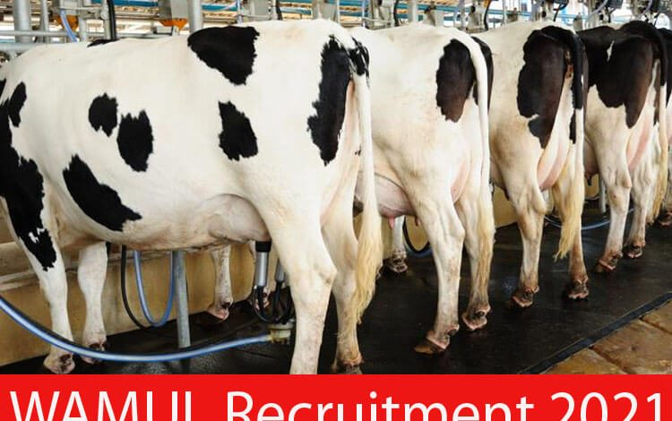 WAMUL Recruitment 2021
