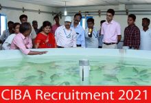 Photo of CIBA Recruitment 2021 | 03 Young Professional Posts | Apply Online